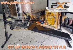 Sit Up Bench Ladder Style