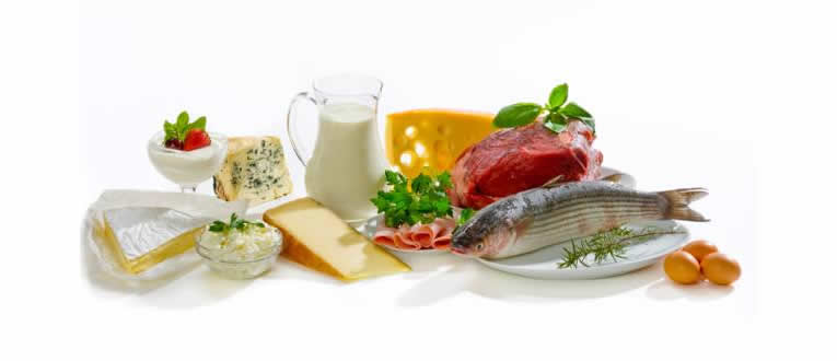 protein-foods-low-carb